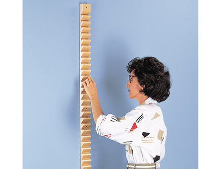 Hausmann Industries Inc Shoulder Ladder